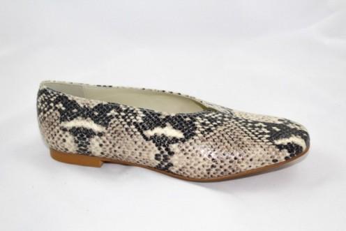 Zapato duzy serpiente